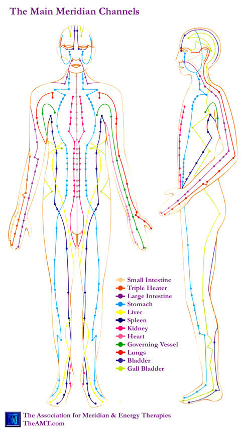 The Association for Meridian & Energy Therapies illustration scma review chuan image cause and yvette